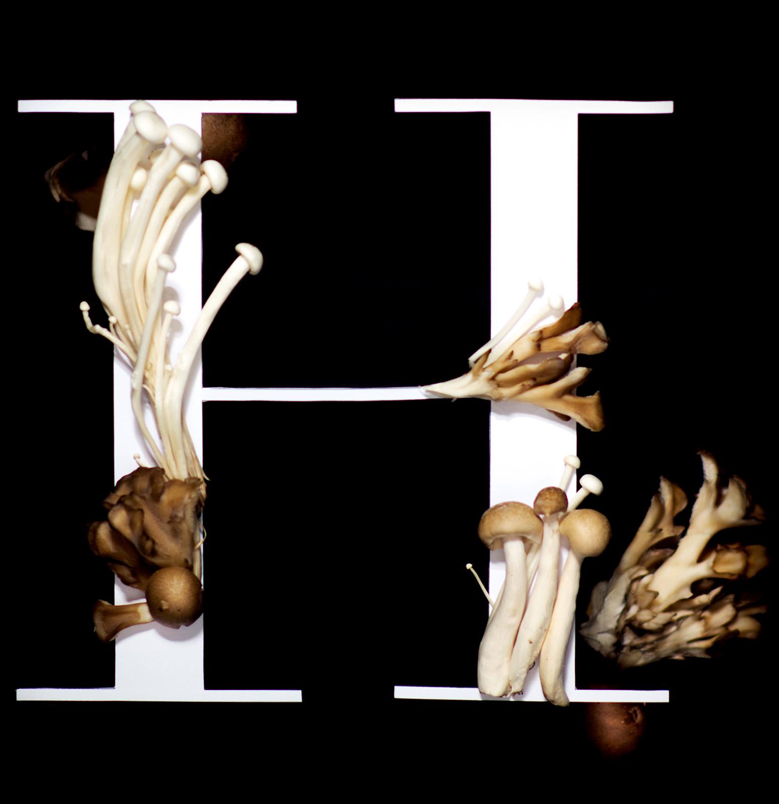 poster_mushrooms_web_h